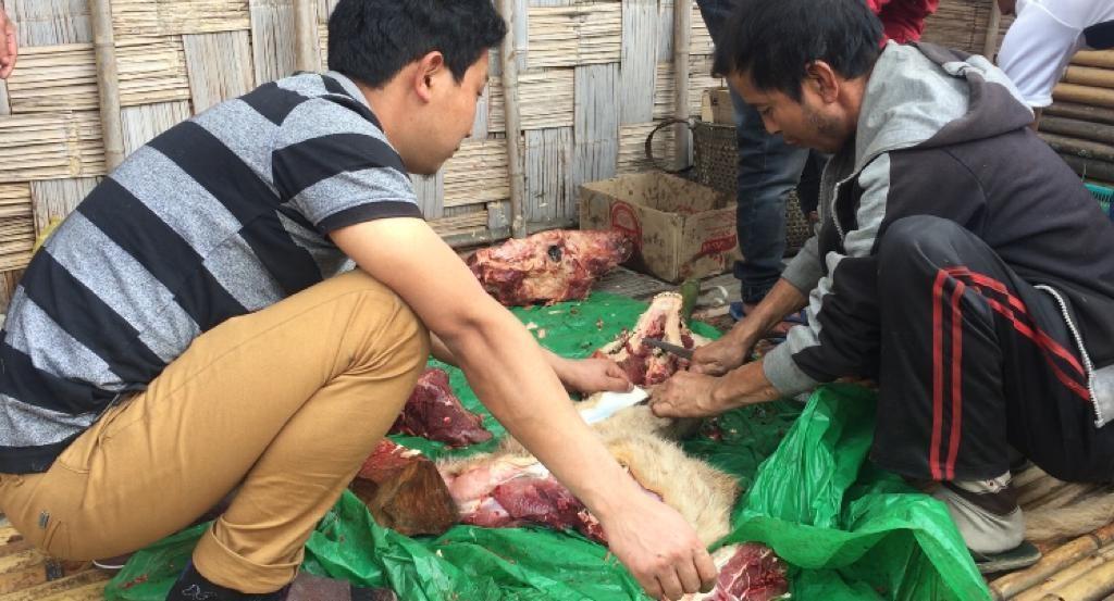 Sacrificio de animales en la aldea