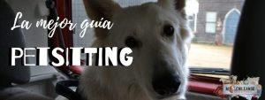 ¿Qué es el Petsitting?